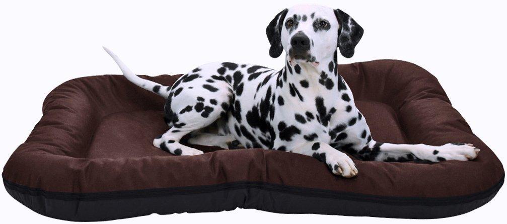 Knuffelwuff In und Outdoor Hundebett XXL